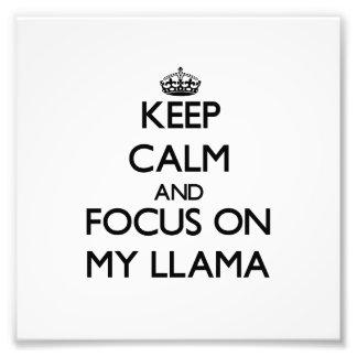 Keep Calm and focus on My Llama Photo Print