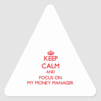 Keep Calm and focus on My Money Manager Triangle Stickers