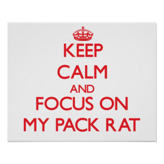 Keep Calm and focus on My Pack Rat Poster