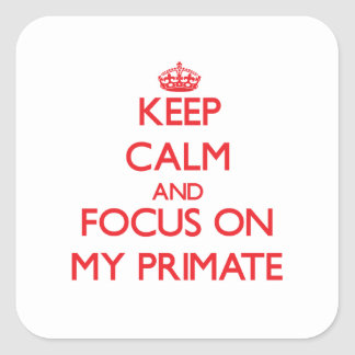 Keep Calm and focus on My Primate Stickers