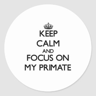 Keep Calm and focus on My Primate Round Sticker