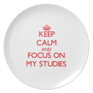 Keep Calm and focus on My Studies Plate