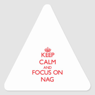 Keep Calm and focus on Nag Triangle Stickers