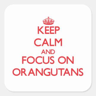 Keep Calm and focus on Orangutans Square Stickers
