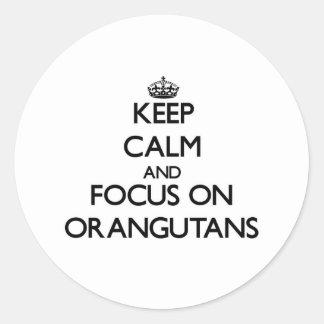 Keep Calm and focus on Orangutans Round Sticker