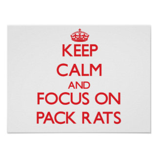 Keep Calm and focus on Pack Rats Poster