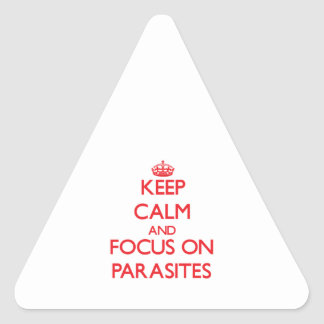 Keep Calm and focus on Parasites Triangle Sticker