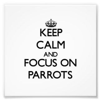 Keep Calm and focus on Parrots Photographic Print