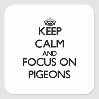 Keep Calm and focus on Pigeons Square Stickers
