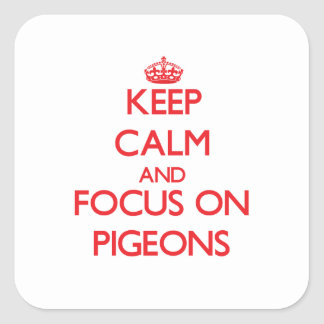 Keep Calm and focus on Pigeons Stickers