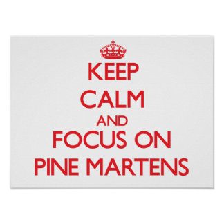 Keep calm and focus on Pine Martens Posters