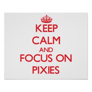 Keep Calm and focus on Pixies Poster