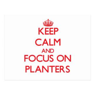 Keep Calm and focus on Planters Postcard