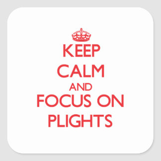 Keep Calm and focus on Plights Sticker