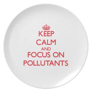 Keep Calm and focus on Pollutants Dinner Plate