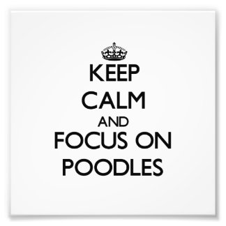 Keep Calm and focus on Poodles Photographic Print