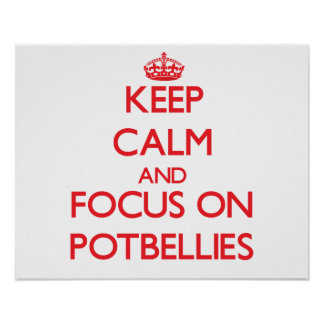 Keep Calm and focus on Potbellies Poster