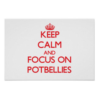 Keep Calm and focus on Potbellies Posters
