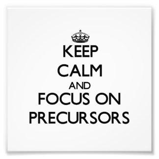 Keep Calm and focus on Precursors Photograph