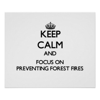 Keep Calm and focus on Preventing Forest Fires Print