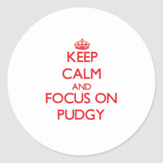 Keep Calm and focus on Pudgy Classic Round Sticker