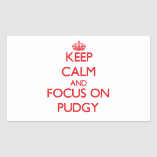 Keep Calm and focus on Pudgy Rectangular Sticker