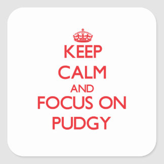 Keep Calm and focus on Pudgy Square Sticker
