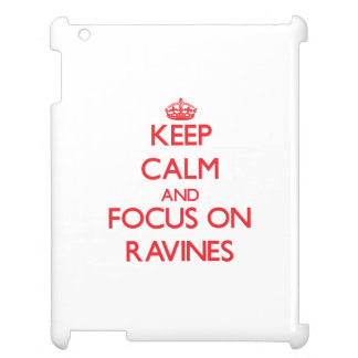 Keep Calm and focus on Ravines iPad Cover