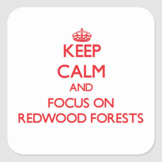 Keep Calm and focus on Redwood Forests Square Sticker