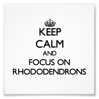 Keep Calm and focus on Rhododendrons Photo