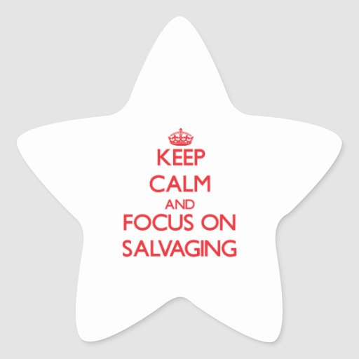 Keep Calm and focus on Salvaging Star Sticker