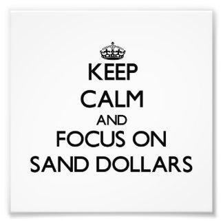 Keep Calm and focus on Sand Dollars Photo Art