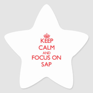 Keep Calm and focus on Sap Star Sticker