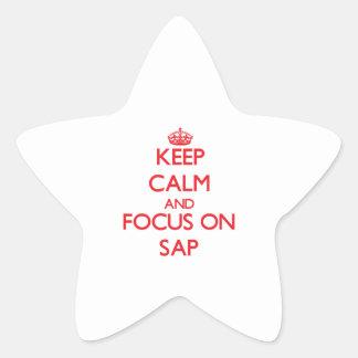 Keep Calm and focus on Sap Star Sticker