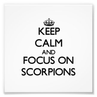 Keep Calm and focus on Scorpions Photographic Print