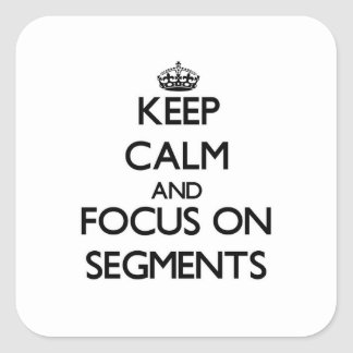 Keep Calm and focus on Segments Sticker