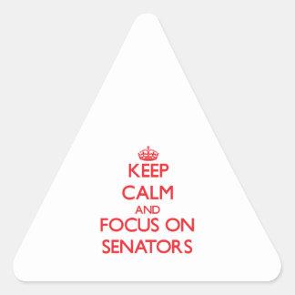 Keep Calm and focus on Senators Triangle Sticker
