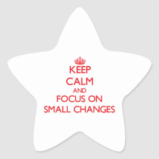 Keep Calm and focus on Small Changes Star Sticker