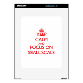 Keep Calm and focus on Small-Scale Skins For iPad