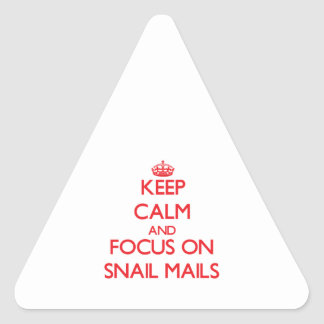 Keep Calm and focus on Snail Mails Triangle Stickers