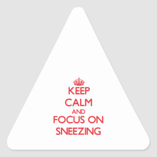 Keep Calm and focus on Sneezing Triangle Stickers