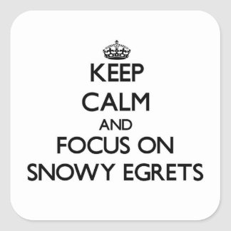 Keep calm and focus on Snowy Egrets Sticker