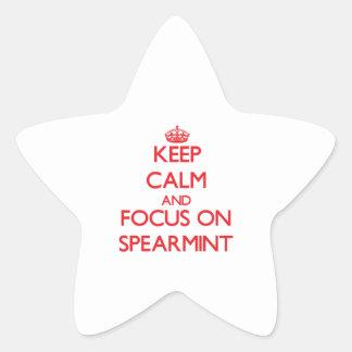Keep Calm and focus on Spearmint Star Sticker