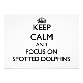 Keep calm and focus on Spotted Dolphins Invites