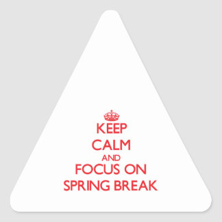 Keep Calm and focus on Spring Break Triangle Stickers