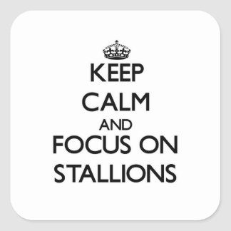 Keep Calm and focus on Stallions Square Stickers