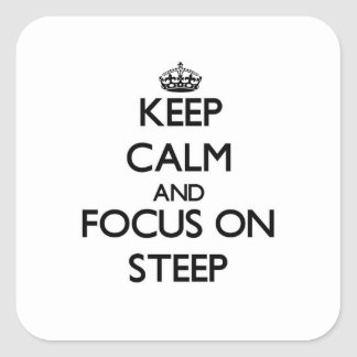 Keep Calm and focus on Steep Sticker