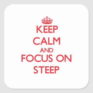 Keep Calm and focus on Steep Stickers