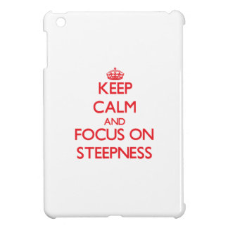 Keep Calm and focus on Steepness Case For The iPad Mini