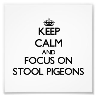 Keep Calm and focus on Stool Pigeons Photograph